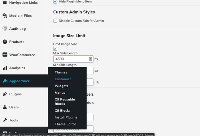 Click on Appearance > Customize to edit logo and site design